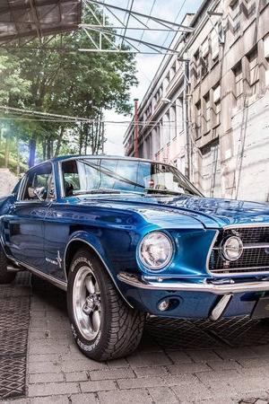 Ford Mustang Fastback 1967 od Carlex Design